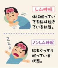 レム睡眠ノンレム睡眠